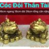 tuong coc doi bang dong 4