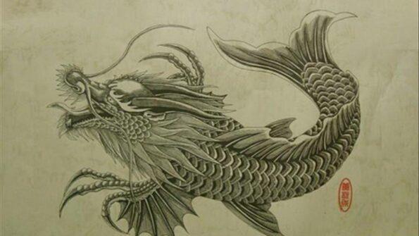 cá chép hoá rồng